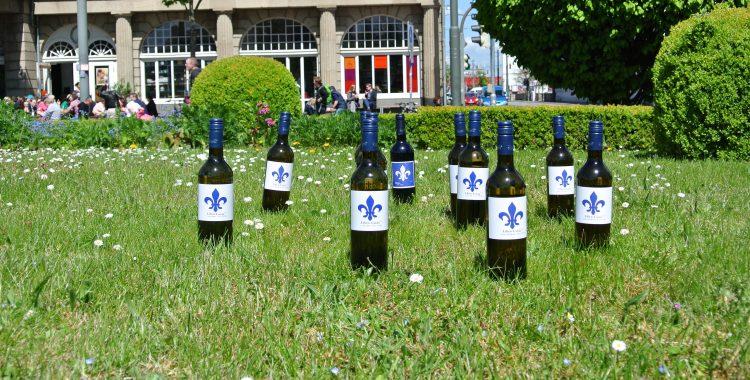 Unsere Lilien-Cuvée-Mannschaft ist aufgestellt!