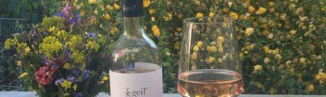 Geils Merlot & Spätburgunder Rosé 2015 – 16,5 Points (Vinum)