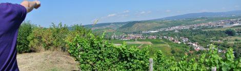 Meine-Nahe-Stopp 4: Weingut Joh. Bapt. Schäfer in Burg Layen